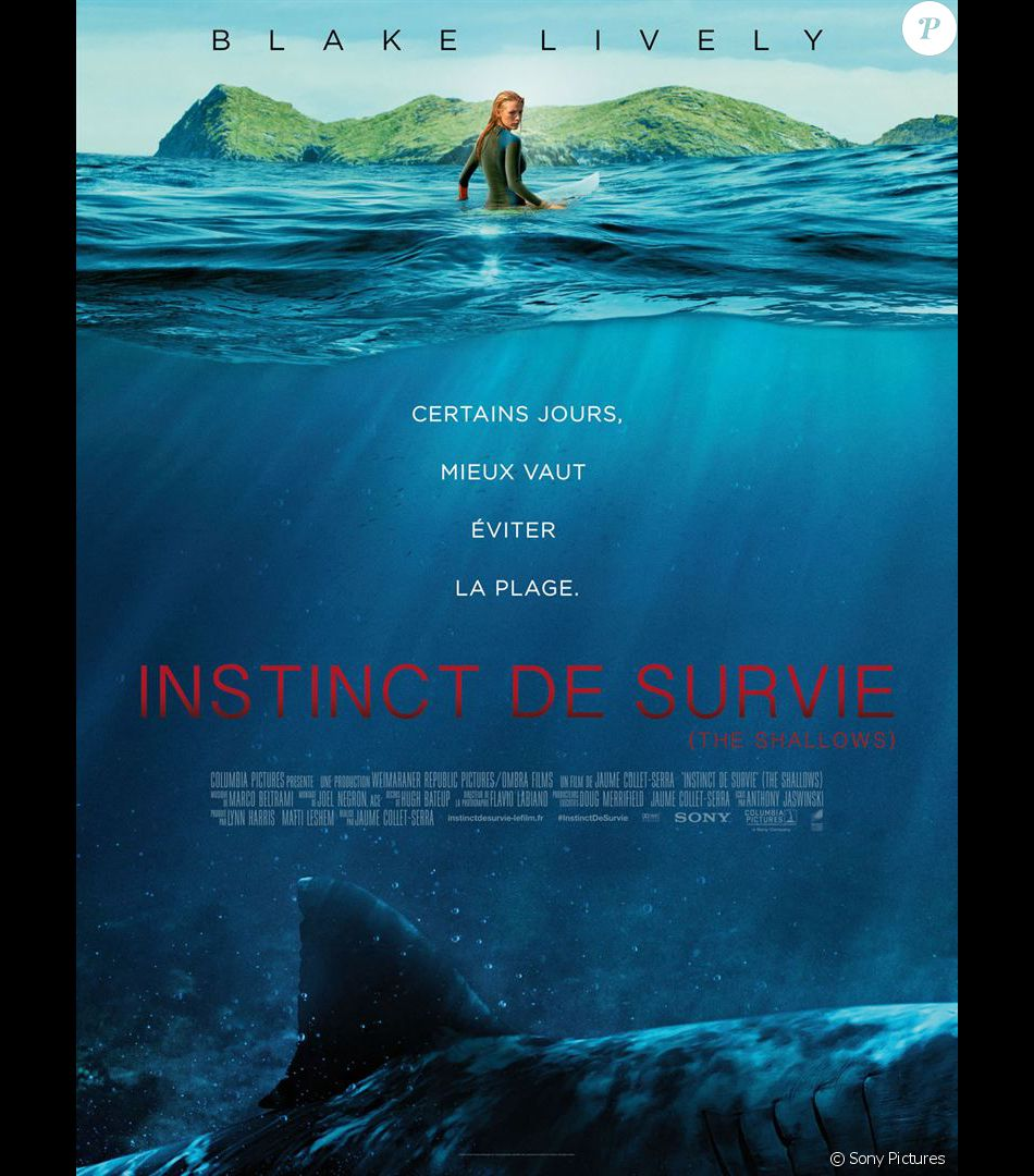 instinct-de-survie-the-shallows-53866-600-600-F